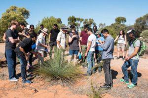 Students Explore Australia - Flinders Ranges Camp (22)
