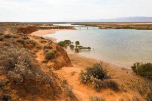 Students Explore Australia - Flinders Ranges Camp (53)