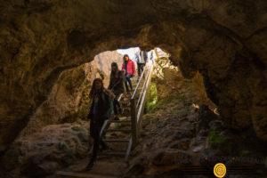Naracoorte Caves Camp - Students Explore Australia (39) (1)