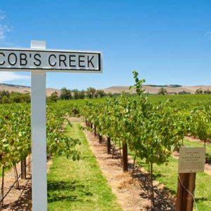 Barossa Valley Wine Tour 14