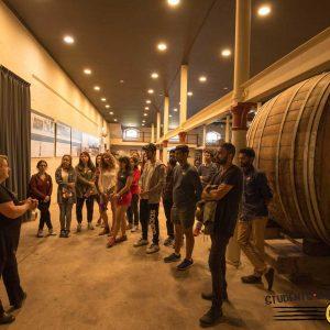 Barossa Valley Wine Tour 5