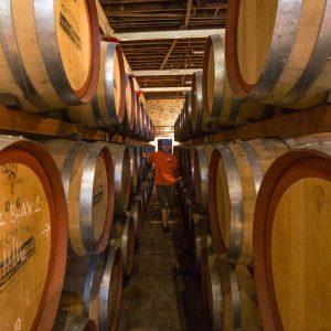 Barossa Valley Wine Tour 7