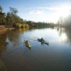 Murray River Canoeing 10