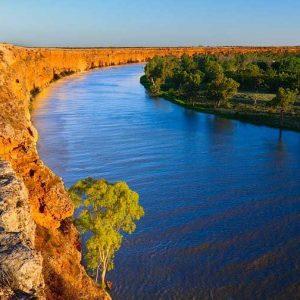 Murray River Canoeing 8