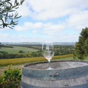 Chocolate and Cheese Wine Tour 4