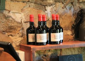 Students Explore Australia - Barossa Valley Wine Tour (40)
