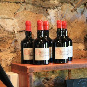 Students Explore Australia - Barossa Valley Wine Tour (40)