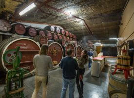 Students Explore Australia Wine Tour Barossa Valley (U) (48)