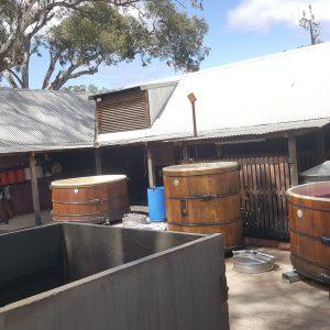 Students Explore Australia Wine Tour Barossa Valley (U) (50)-22